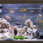 Enfeite para aquário de peixes
