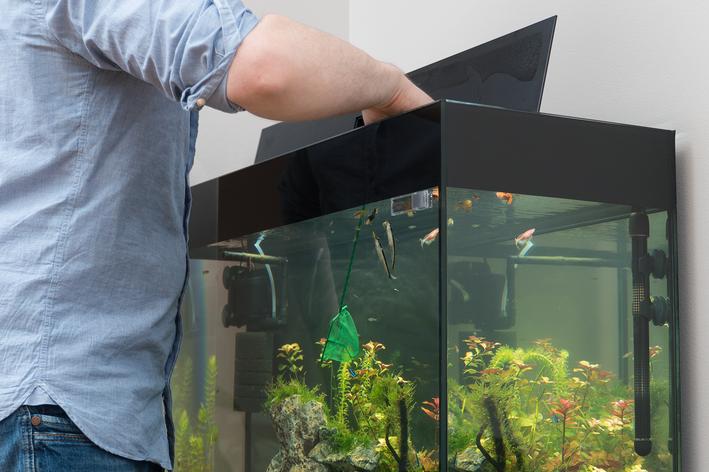 Homem instalando equipamento para aquário