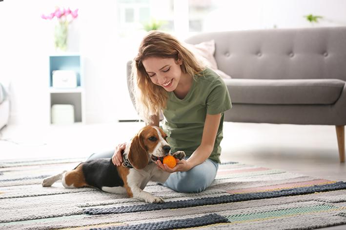 Tutora brinca com seu cachorro