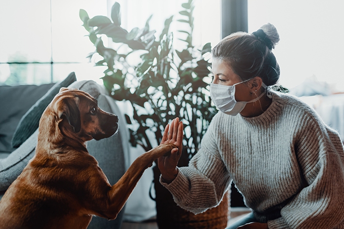 cachorro e tutora