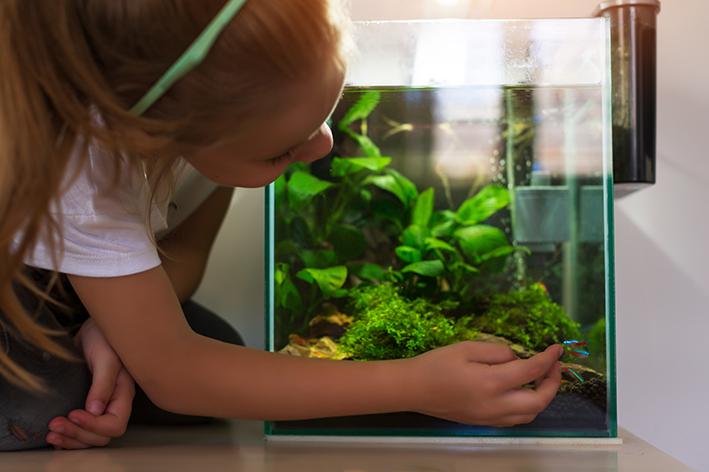 Garota com aquário
