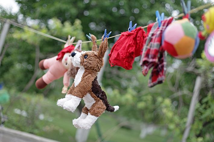 brinquedos e roupas de cachorro penduradas secando ao sol