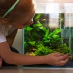 Menina cuida do aquário no inverno