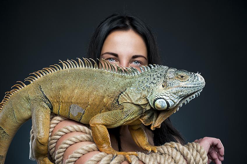 Mulher com iguana de estimação