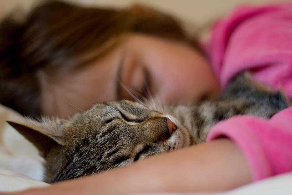 garota dorme com seu gatinho