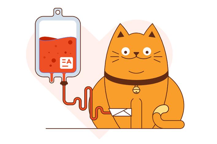 Qual o critério para um gato se tornar doador de sangue