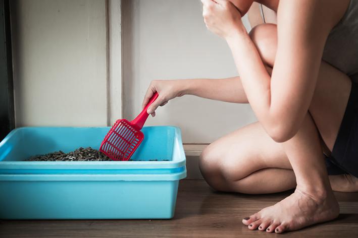 Mulher agachada limpando a caixa de areia para gato