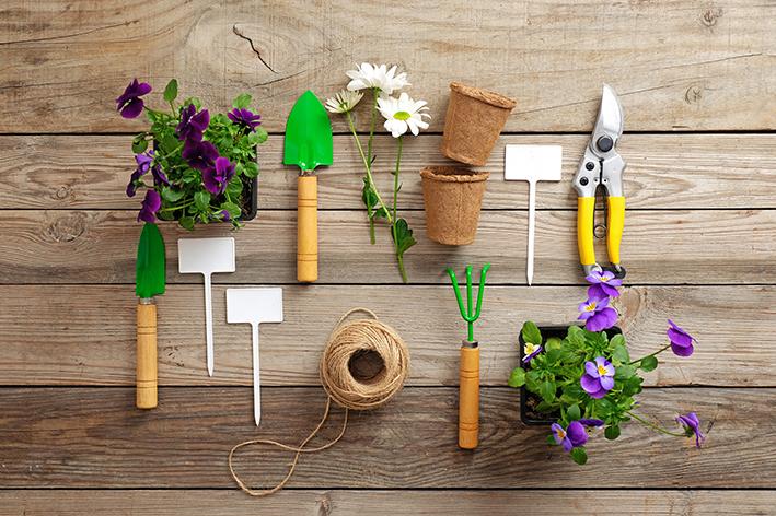 kit de jardinagem completo