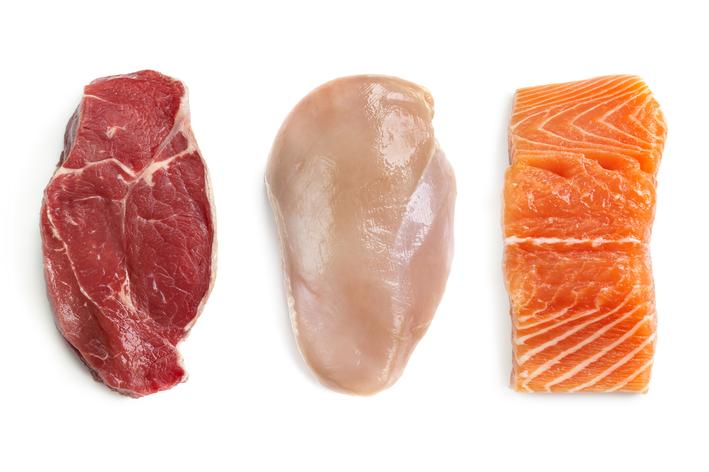 Tipos de proteína para cachorro