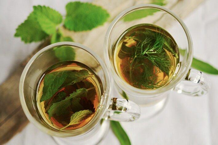 chá com plantas medicinais