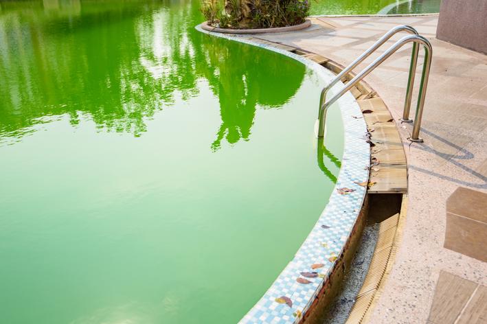 como limpar piscina verde em minutos