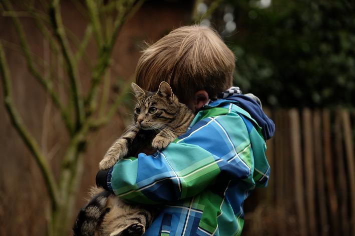Garoto abraça gatinho adotado em feira de adoção