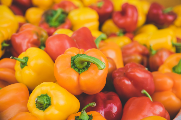 Como plantar pimentão de todas as cores em casa