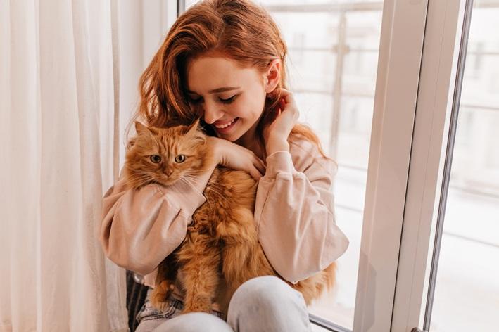 por quanto tempo um gato lembra do dono